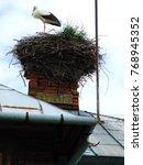 a white stork in a nest build... | Shutterstock . vector #768945352