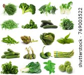 a background of fresh green...   Shutterstock . vector #769003522
