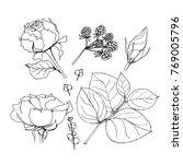 set of elements.  illustrations ... | Shutterstock . vector #769005796