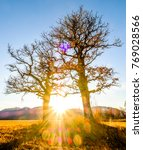 landscape murnauer moos - bavaria - germany - stock photo
