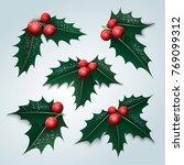 holly berry  mistletoe  covered ... | Shutterstock .eps vector #769099312