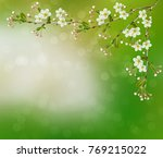 blossoming branch apple. bright ... | Shutterstock . vector #769215022