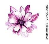 watercolor wild tropical exotic ... | Shutterstock . vector #769233082