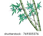 bamboo vector drawing | Shutterstock .eps vector #769305376