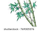 bamboo vector drawing | Shutterstock .eps vector #769305376
