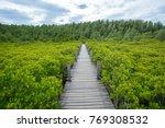 wooden bridge with green plant... | Shutterstock . vector #769308532