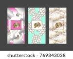 set packaging templates.vector... | Shutterstock .eps vector #769343038