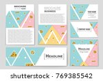 abstract vector layout... | Shutterstock .eps vector #769385542