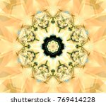 abstract multicolored fractal... | Shutterstock . vector #769414228