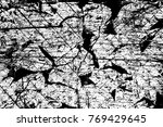 grunge black and white pattern. ... | Shutterstock . vector #769429645