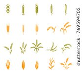 wheat ears or rice icons set.... | Shutterstock . vector #769594702
