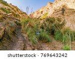 waterfall at ein gedi nature... | Shutterstock . vector #769643242
