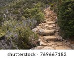 hiking track on mount... | Shutterstock . vector #769667182