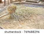 Small photo of Rice Plant Process