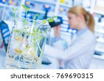 experiment with genetically... | Shutterstock . vector #769690315