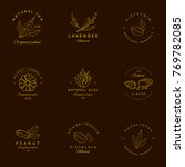 vector set of golden packaging... | Shutterstock .eps vector #769782085