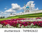 a  colorful flower bed near the ... | Shutterstock . vector #769842622