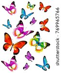 beautiful color butterflies set ... | Shutterstock . vector #769965766