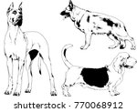 vector drawings sketches... | Shutterstock .eps vector #770068912