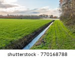 Polder Landscape In The...