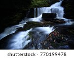 mclean falls on the tautuku... | Shutterstock . vector #770199478