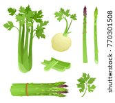 bright vector illustration of...   Shutterstock .eps vector #770301508