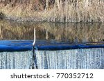 stick disrupting the continuity ... | Shutterstock . vector #770352712
