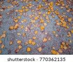 Autumn Yellow Fallen Leaves....