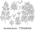 set of leaves and branches.