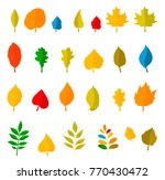 set of colorful autumn leaves. | Shutterstock . vector #770430472