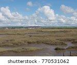 wildlife refuge on salt marshes ... | Shutterstock . vector #770531062