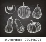 pumpkins  butternut squash and... | Shutterstock .eps vector #770546776