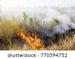 Small photo of Burning the fields causes air pollution to cause global warming.