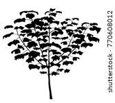 realistic vector tree in black... | Shutterstock .eps vector #770608012