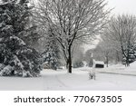 winter landscape with small... | Shutterstock . vector #770673505