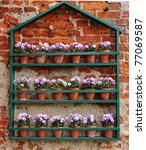 Colorful Flowerpot Display Of...