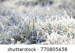 Frost On Grass  Morning Light...