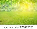 Nature Spring Grass Background...