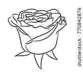 bud flower rose from the... | Shutterstock . vector #770842876