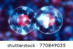 dividing cell with nucleus in... | Shutterstock . vector #770849035