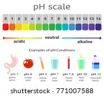 scale of ph value for acid and... | Shutterstock .eps vector #771007588
