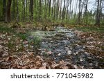 landscape with trees gnawed by...   Shutterstock . vector #771045982