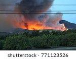 breathing the air in ventura... | Shutterstock . vector #771123526