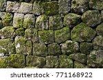 Moss Rock Wall In Japan