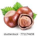 hazelnuts  kernel of hazelnut... | Shutterstock . vector #771174658