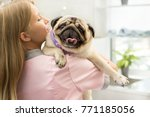 female vet carrying a pug... | Shutterstock . vector #771185056