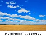view on yellow golden wheat... | Shutterstock . vector #771189586
