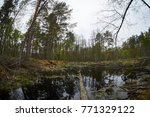 landscape with trees gnawed by...   Shutterstock . vector #771329122