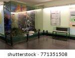 war remnants museum exhibition  ... | Shutterstock . vector #771351508