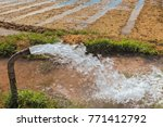 forcefull water gushing out ... | Shutterstock . vector #771412792